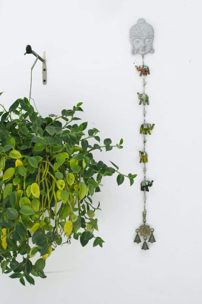 vertical garden budget small backyard ideas