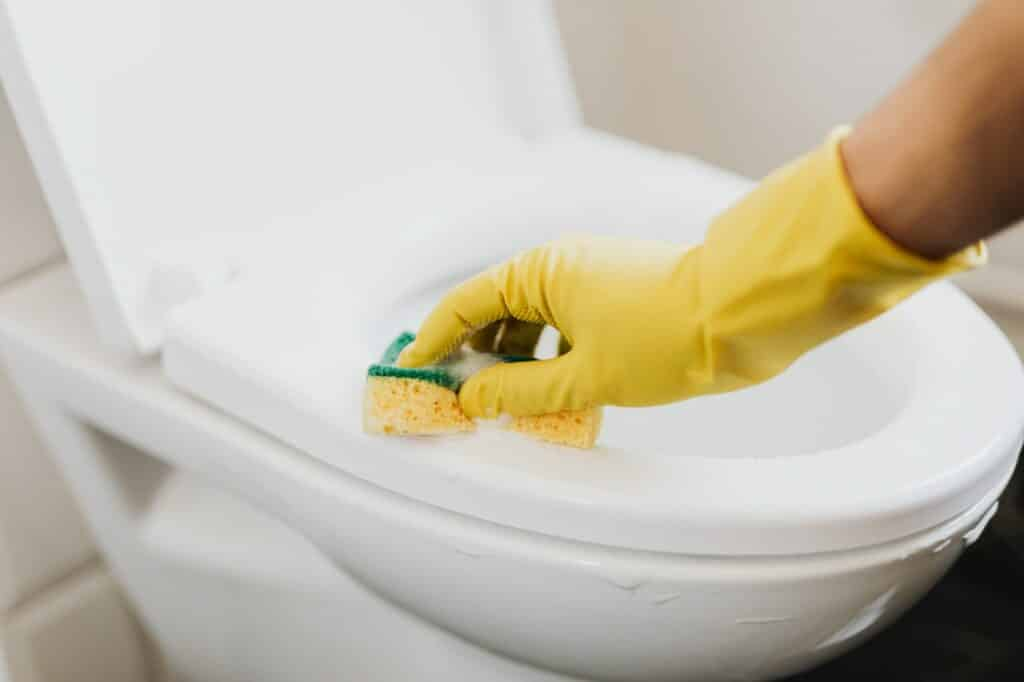 bathroom cleaning tips for toilet