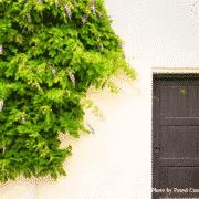 home exterior paint ideas