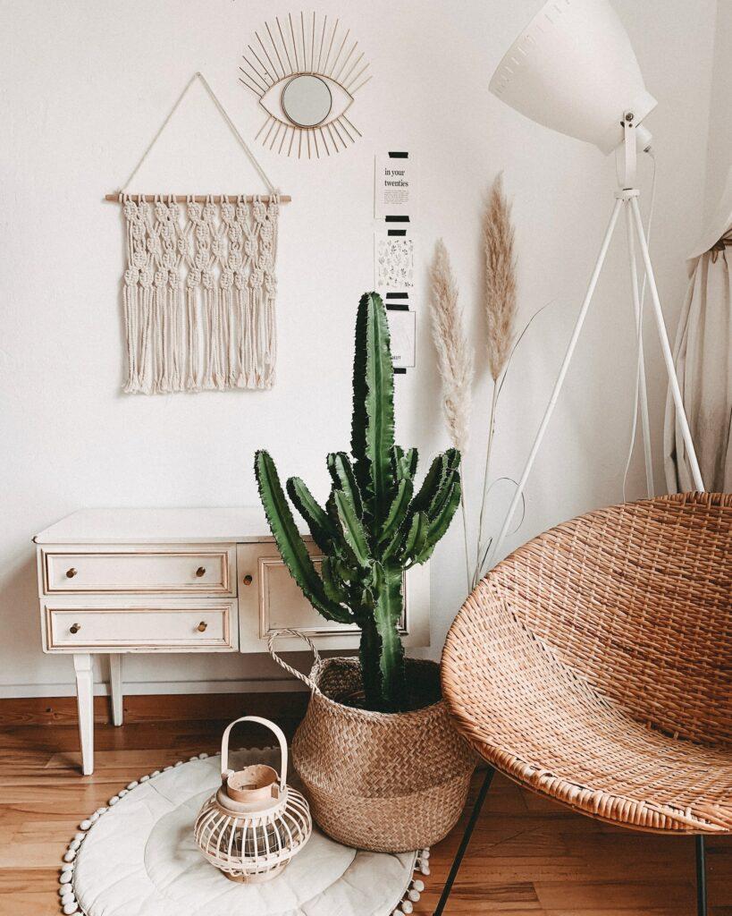 plants cottagecore home remodel